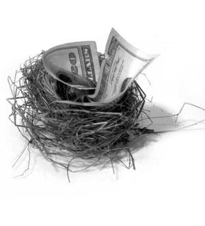 gniazdo z pieniędzmi